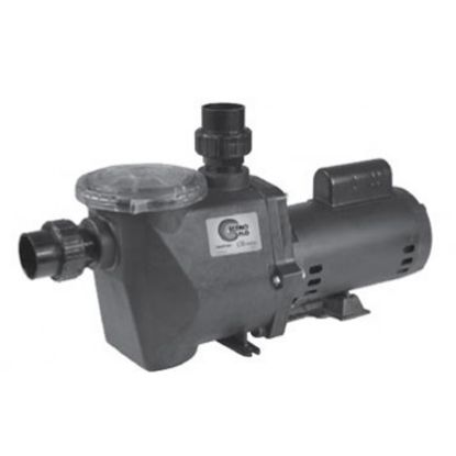 2 HP 230V 2 SPD ECONO FLO PUMP FULL RATED IG 2IN SKT UNIONS  ECONO-220