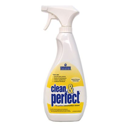22 OZ CLEAN & PERFECT 12/CS NATURAL CHEMISTRY 176