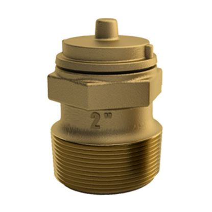 2IN MPT BRONZE HYDROSTATIC VALVE PV-20